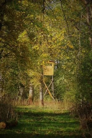 L'Argonne d'automne suite 1