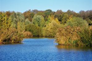 L'Argonne d'automne suite 2