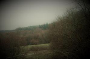 Grisailles et pluies du jour.