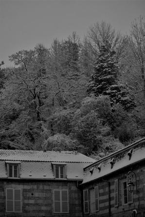 campagne sous la neige.