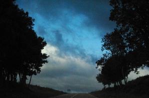 ciel, forêt et ville du jour..