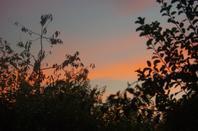 Ciel du soir en Argonne