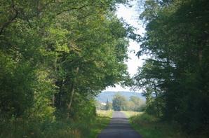 Nature et campagne en Argonne