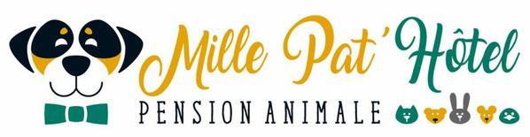 """COMPLEXE CANIN de 368 m² (Pension canine """"MILLE PAT'HOTEL) dans le 85"""