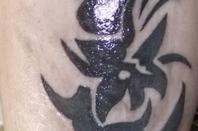 nos tatoo