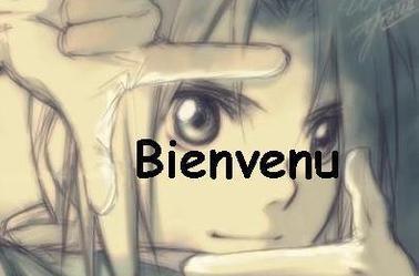 Fullmetal Alchemist - L'histoire
