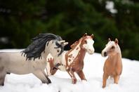 Sabots dans la neige partie 2