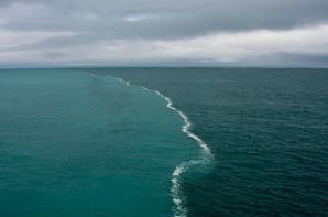 Il a donné libre cours aux deux mers pour se rencontrer; il y a entre elles une barrière qu'elles ne dépassent pas. [Coran 55:20 / 55; 20] N'y a t'il pas assez de preuve d'Allah sur terre ?