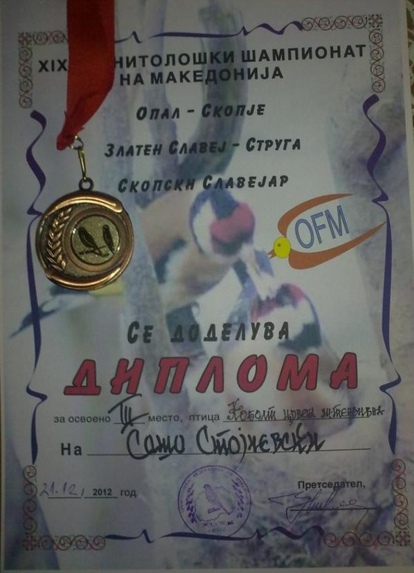My awards from 19-th Ornithological Competition