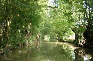 Vacances 2010 : Les marais Poitevins