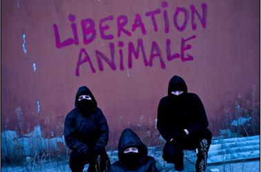 ALF - Front Liberation Animal