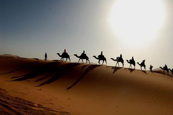 .le sahara marocain