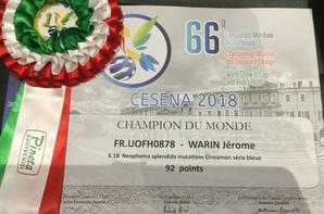 Une médaille d'or et une médaille de bronze au championnat du monde à Cesena 2018