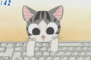 Meow !!!!