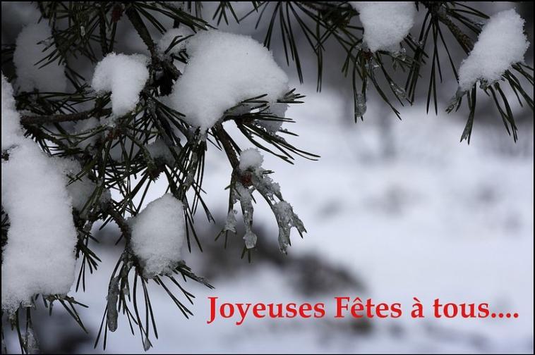 joyeu Noel à tous