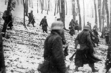361. Volksgrenadierdivision