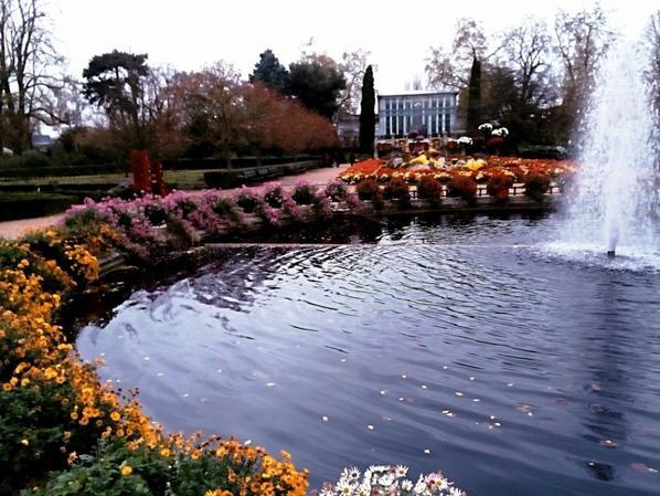 Fontaine , aux couleurs mauve/ violet l'eau , entourée de ses plantes d'automne . . .