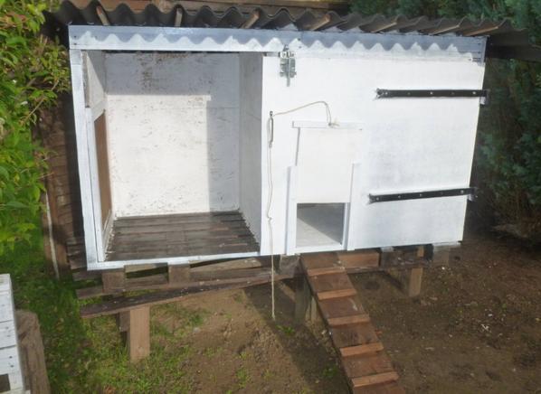 Cabane à Poules