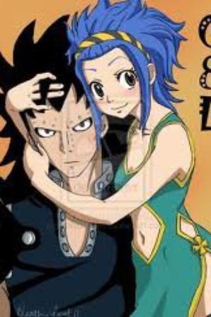 """le couple """"levy et gadjil """" de fairy tail"""