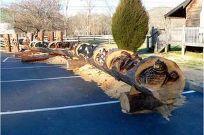 sculptures sur bois (photo trouvées sur le blog http://nicky08.centerblog.net/ )