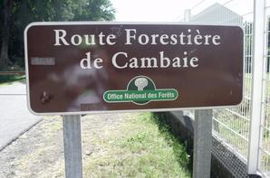 RANDO SANTE CAMBAIE / ETANG ST-PAUL A/R (EN REMPLACEMENT DE LA FORET DE L'ETANG SALE) LE 16 JUIN 2012
