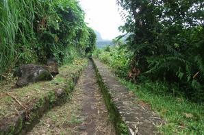 Rando Santé Sentier Canal l'Usine Bras Panon Dimanche 25 janvier 2015