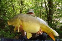 96h dans un privé avec mon record perso du plan d'eau 18.4kg et por un total de 449kg por 40 poissons
