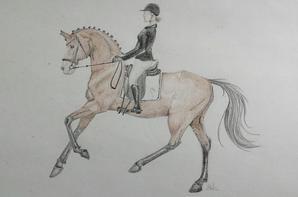 Programme et dessin