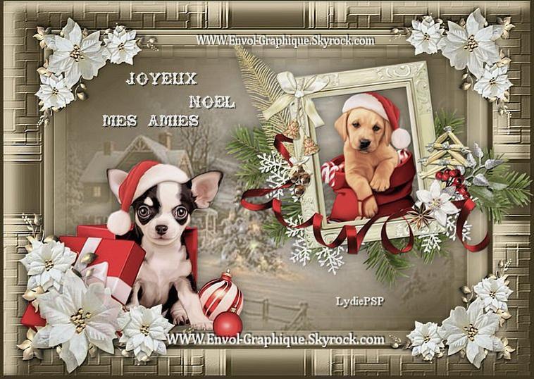 **cadeau de mon amie lydie *****merci  ***