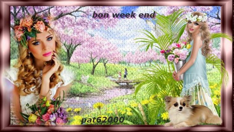 **** bon week end  a vous mes ami(e)s  ****  je serais absente  **