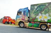 Salon du camion de l'Aube à Torvilliers (10)