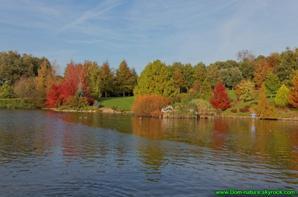Blog de dom nature page 482 animaux sport nature et - Jardin bois marquis vernioz colombes ...