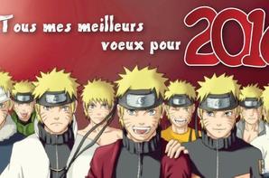 Bonne Année  tous et à toutes !!!!!
