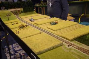 Fête du train miniature (7)