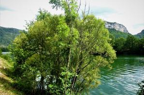 Au Lac Chancia...