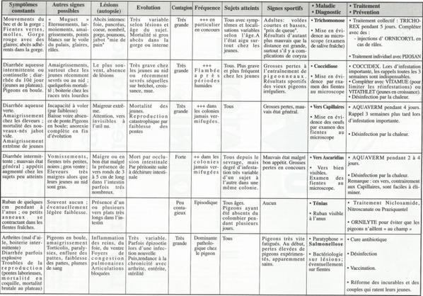Listes des diagnostics des maladies en fonction des symptômes des pigeons