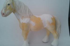 Strong du Foal