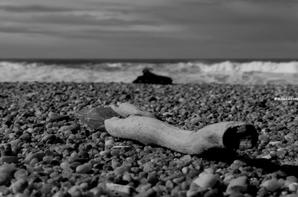 Promenade sur la plage...........