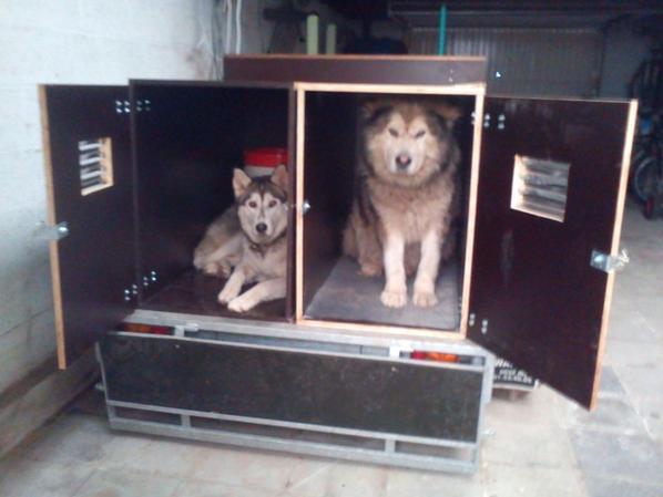 nouvelles caisses chiens pour remorque double essieux. Black Bedroom Furniture Sets. Home Design Ideas