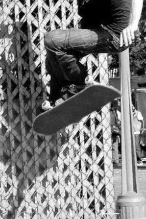 Skate Board suite