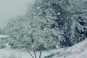 Sous la neige (27/04/2016)