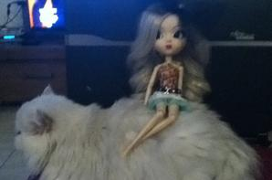 mon chat et ma pullip