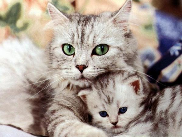 Avec maman !!!