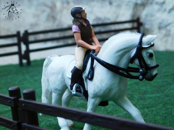 Un cheval pour Lola ~