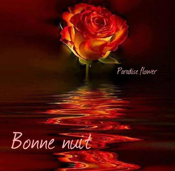 Bonne Et Douce Nuit Petit Ange