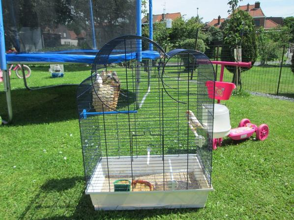 Cage de reproduction n°1