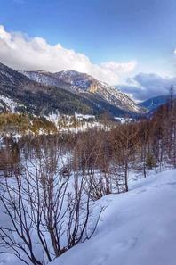 Trail des Neiges - Casterino (Alpes-Maritimes)