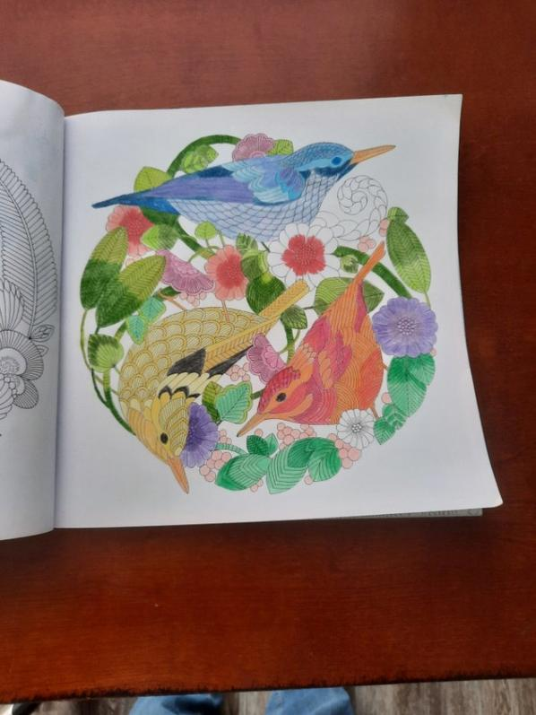 2nd Millie Marotta coloring book page