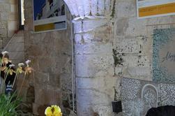 LES ORCHIDEES SYMBOLE DE LA FECONDITE