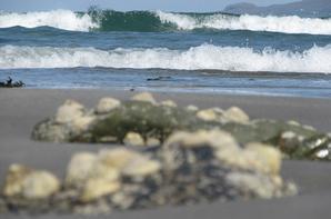 côtes irlandaises